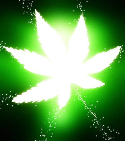 glowing leaf on a bright green background photo