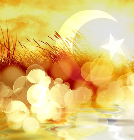 moon  desert: marram grass on a bright orange background Stock Photo
