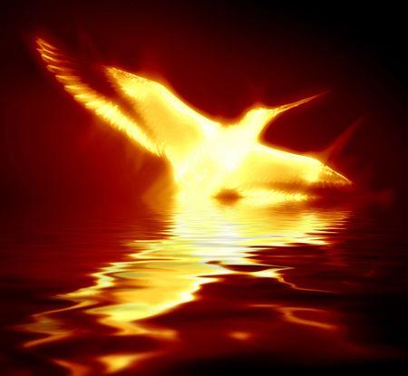 phoenix bird: phoenix rising from the flames on a dark background
