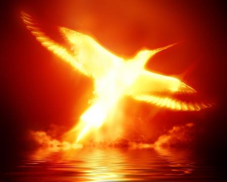 fenice: flaming phoenix su uno sfondo rosso scuro