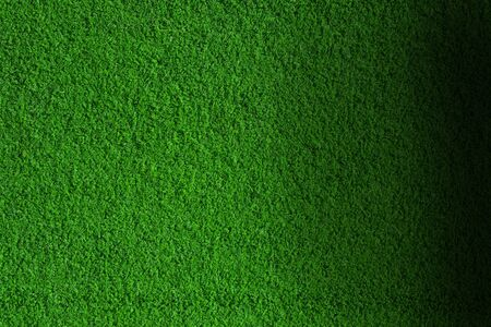 Green and fresh grass background with soft highlights photo