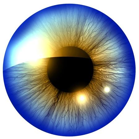 Iris humano con algunos toques de luz y reflejos Foto de archivo