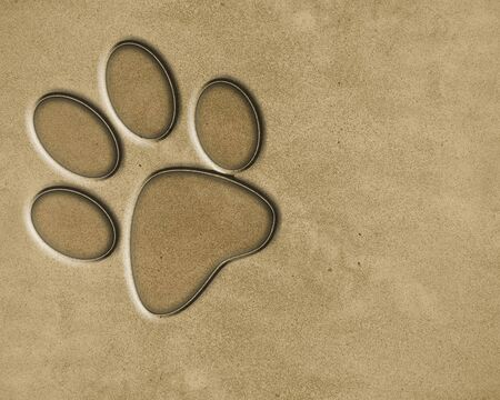 sand background texture with some fine grain in it photo