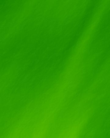green background: Green and fresh background with soft highlights and lines Stock Photo