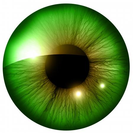 いくつかのハイライトや反射を人間のアイリス 写真素材