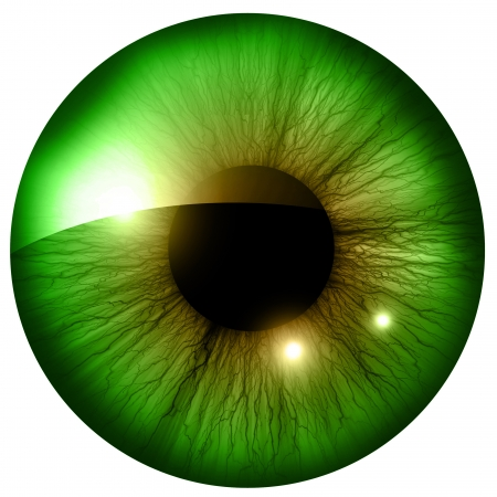 Iris humano con algunos toques de luz y reflejos