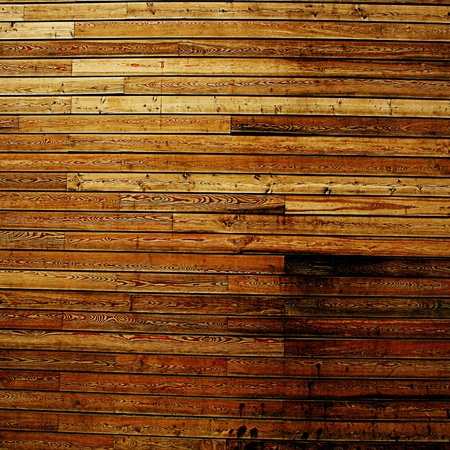 wooden texture with some fine nerves in it photo