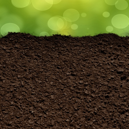 green grass background with a soil texture photo