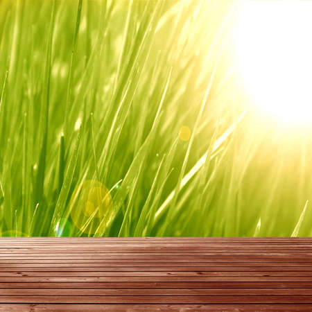 green nature background with a wooden plank photo