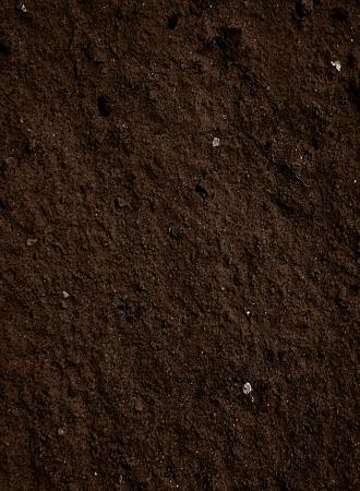 それのいくつかの細粒分を土汚れの質 写真素材