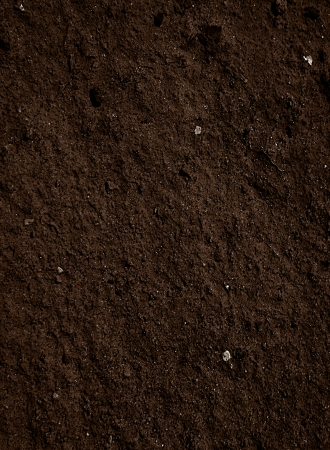 soil dirt texture with some fine grain in it