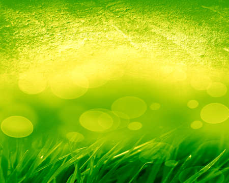 grass blades: abstract green background with some blades of grass