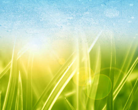 abstract background with green grass and a blue sky above photo