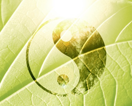 yang ying: yin yang sign on a natural green background Stock Photo