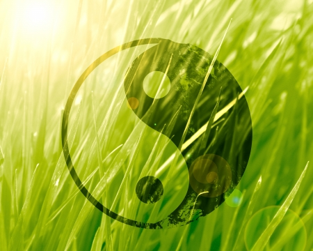 yin yang sign on a natural green background Stock Photo