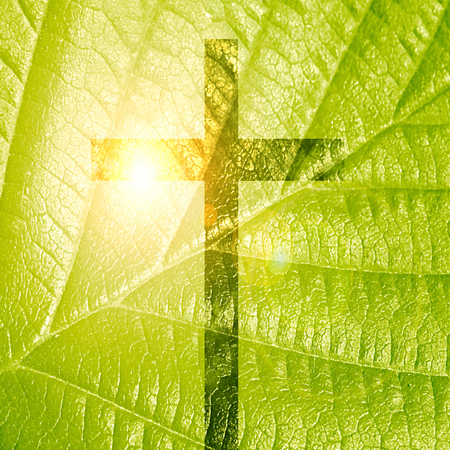 jesuit: glowing christian cross on a green nature background Stock Photo