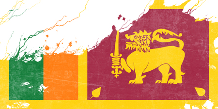 highlights: Sri Lanka flag with some soft highlights and folds