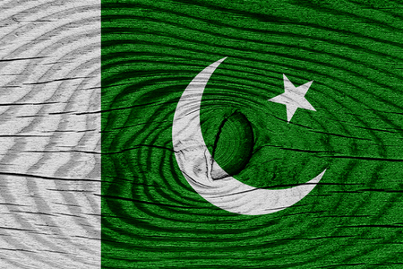 pakistani: Pakistan flag with some soft highlights and folds