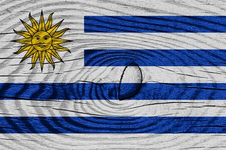 uruguay flag: Uruguay flag with some soft highlights and folds Foto de archivo