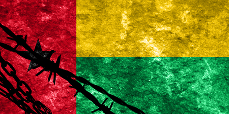 illegal alien: Guinea bissau flag with some soft highlights and folds