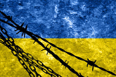 illegal alien: Ukraine flag with some soft highlights and folds
