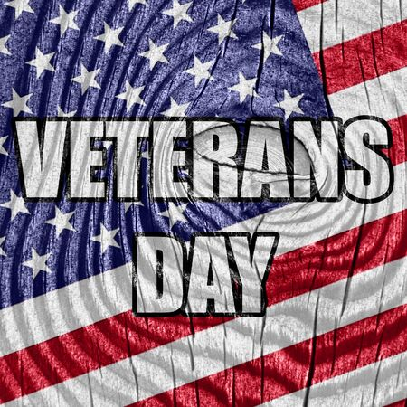 national hero: veterans day background with some soft smooth lines