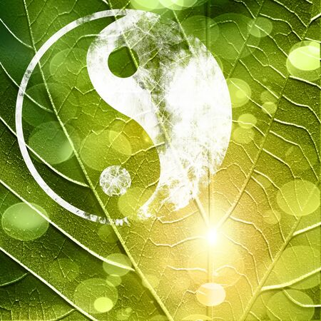 chinese philosophy: The yin and yang grass sign with some soft spots and highlights