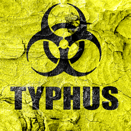 typhus: Typhus concept background with some soft smooth lines