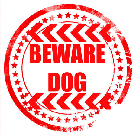 beware: Beware of dog sign with some vivid colors
