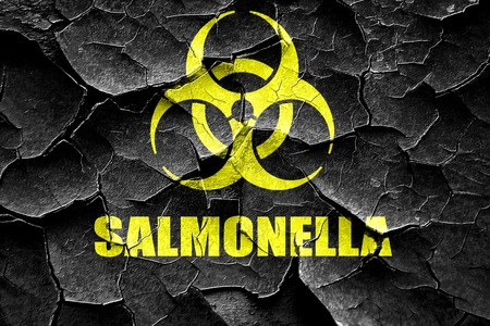 salmonella: Grunge cracked Salmonella concept background with some soft smooth lines