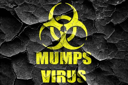 mumps: Grunge cracked Mumps virus concept background with some soft smooth lines