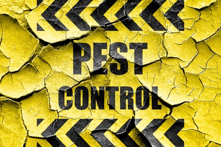 pest: Grunge cracked Pest control background with some smooth lines