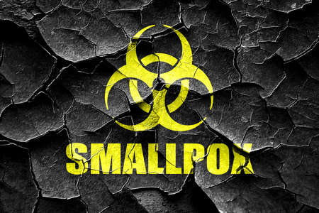 smallpox: Grunge cracked smallpox concept background with some soft smooth lines