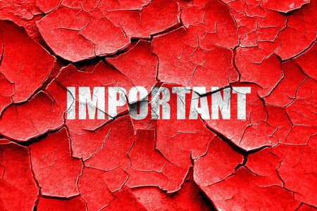 important sign: Grunge cracked important sign background with some soft smooth lines