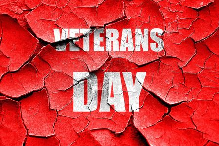 national hero: Grunge cracked veterans day background with some soft smooth lines Stock Photo