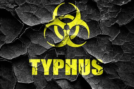 typhus: Grunge cracked Typhus concept background with some soft smooth lines