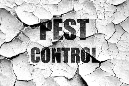 contagion: Grunge cracked Pest control background with some smooth lines