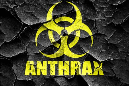 anthrax: Grunge cracked Anthrax virus concept background with some soft smooth lines Stock Photo