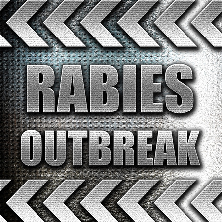 wścieklizna: Grunge metal Rabies virus concept background with some soft smooth lines