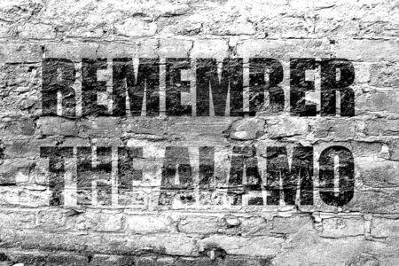 pioneers: remember the alamo