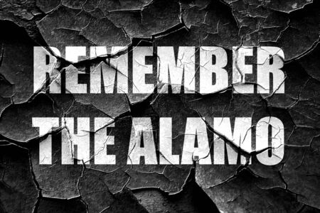 remember: recuerde el álamo Foto de archivo