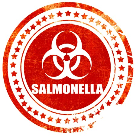 salmonella: Salmonella concept background with some soft smooth lines, isolated red rubber stamp on a solid white background Stock Photo