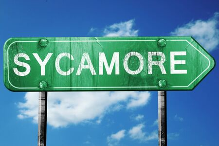 sycamore: sycamore road sign on a blue sky background Stock Photo