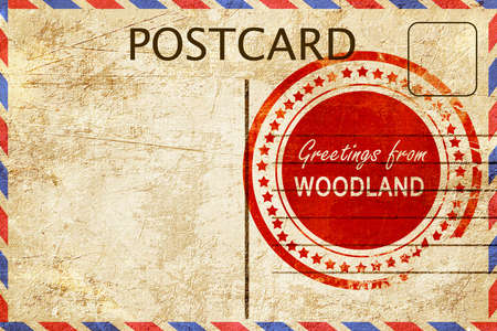 woodland: greetings from woodland, stamped on a postcard