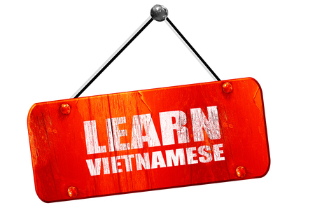 autodidact: learn vietnamese, 3D rendering, red grunge vintage sign