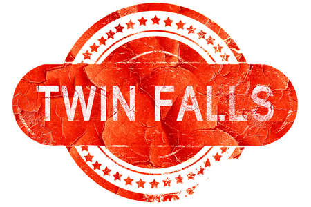 twin: twin falls, red grunge rubber stamp on white background Stock Photo