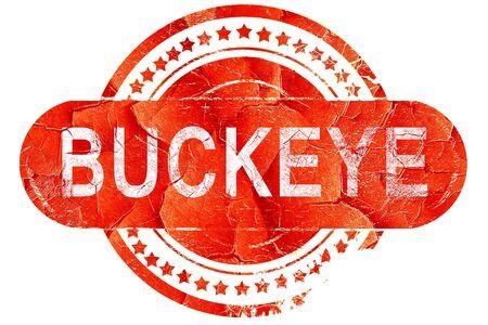 buckeye: buckeye, red grunge rubber stamp on white background
