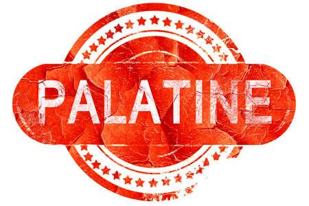 palatine: palatine, red grunge rubber stamp on white background