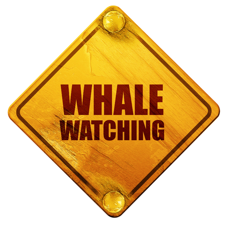 watching 3d: whale watching, 3D rendering, yellow road sign on a white background