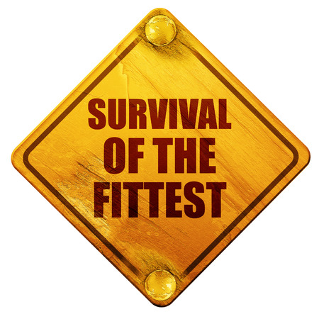 survival: survival of the fittest, 3D rendering, yellow road sign on a white background